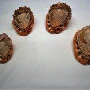 Conchiglie Cassis Rufa incise