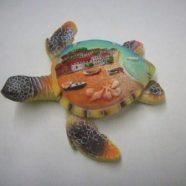 Tartaruga resina